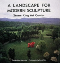 A Landscape for Modern Sculpture